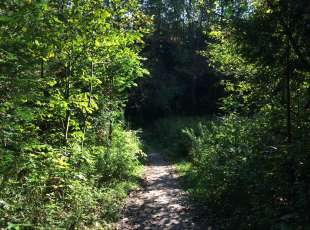 Kincardine Trails - Red Trail